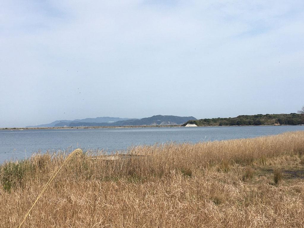【成約済み】洲本市由良の海が見える(海沿い・真横)土地